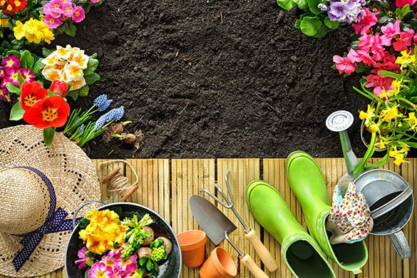 Статья №7 – «Участие индивидуальных садоводов в управлении СНТ».